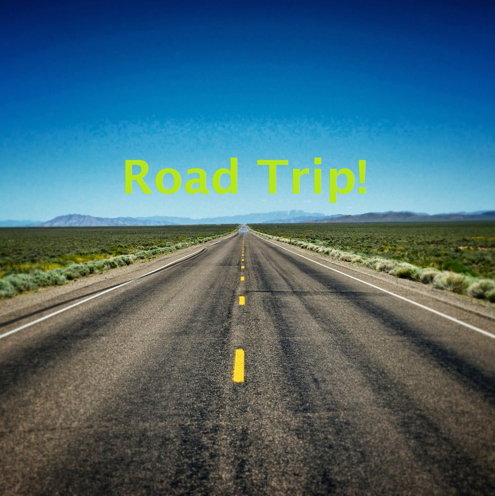 fresh road trip playlists
